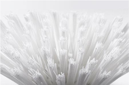 PE filamentPE Fiber