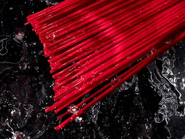 PP nylon filament series